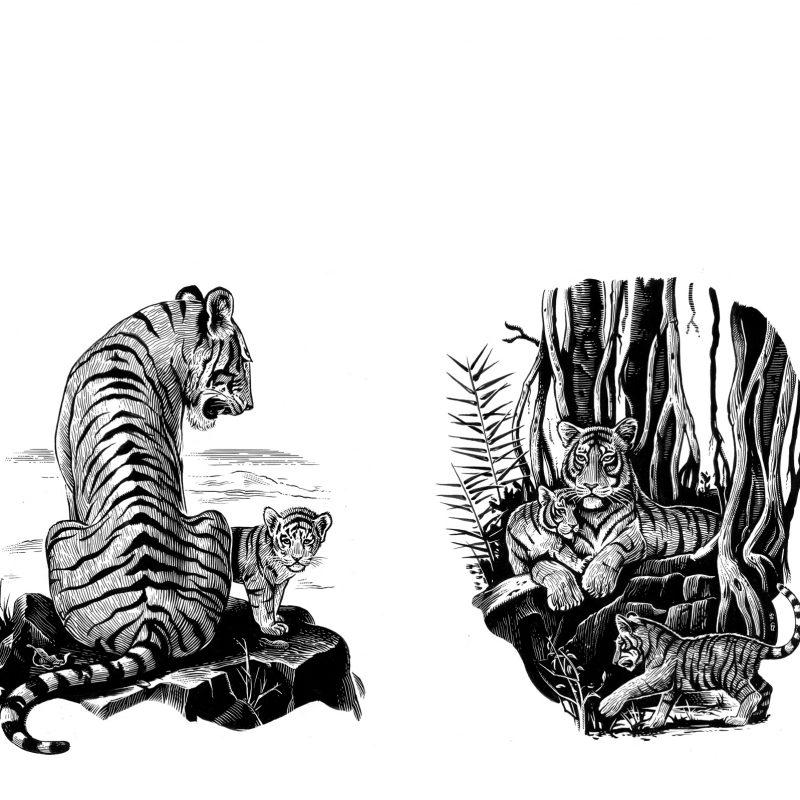 ArtAssociates:Fred-van-Deelen-02-tigers