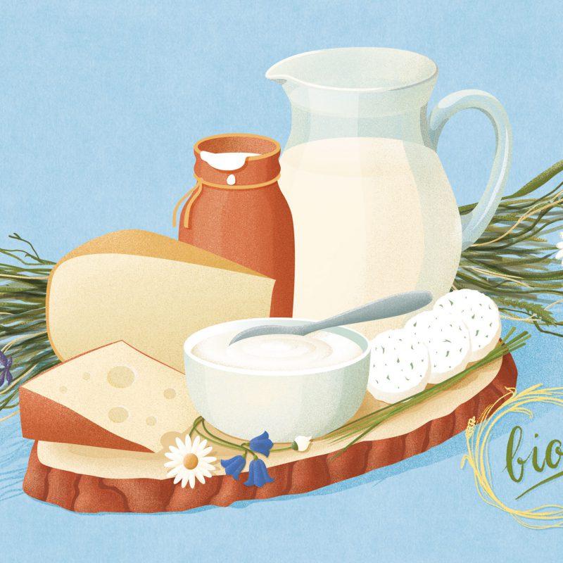 ArtAssociates:illubelle-dairy-composition-2-1900px